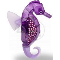 Hexbug Aquabot Mořský koník s akváriem - fialový