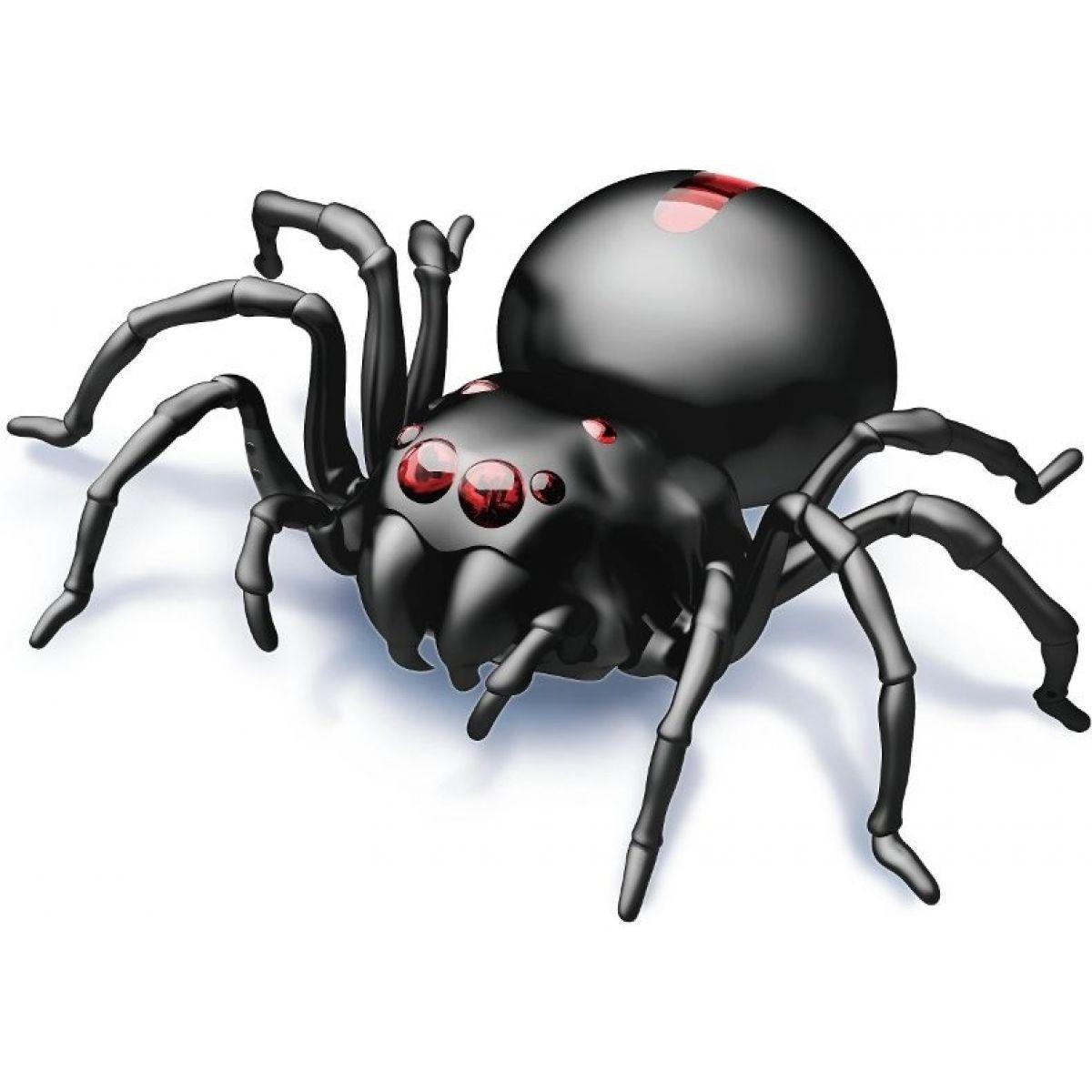 Hm Studio Pavouk na slanou vodu