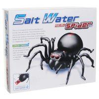 Hm Studio Pavouk na slanou vodu 2