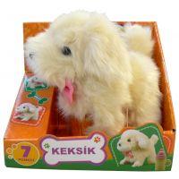 Pejsek Keksík (32K2407)