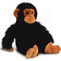 Keel Plyšová Opička 20 cm