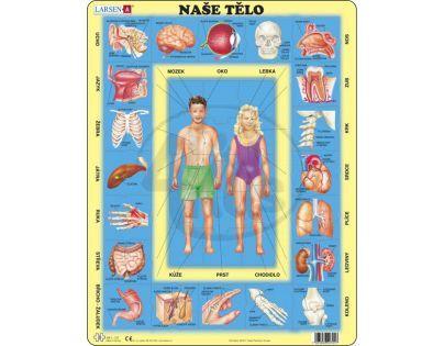 Larsen 22701 - Výukové puzzle Naše tělo