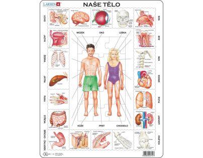 Larsen Puzzle Naše tělo Orgány