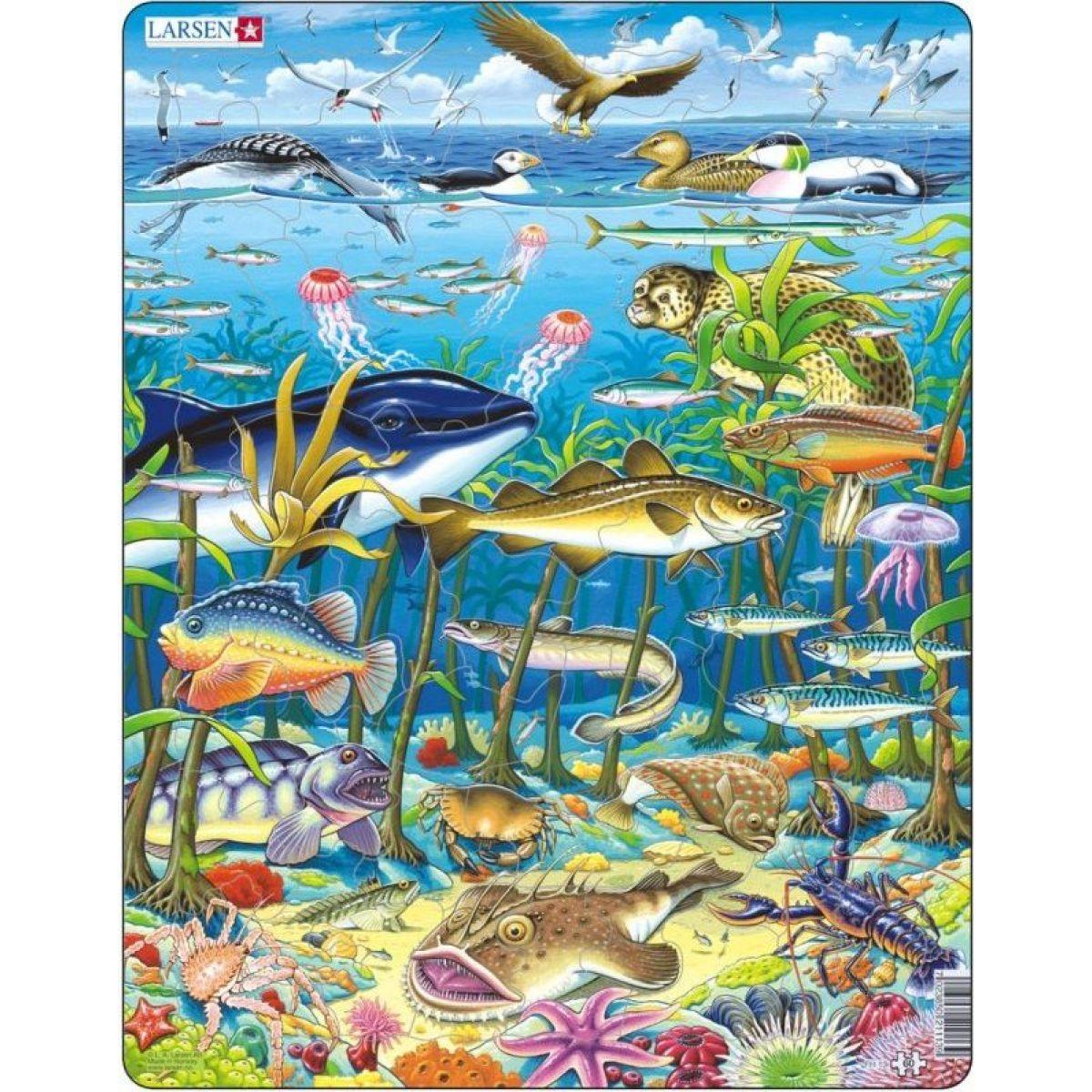 Larsen Zvířata v moři 60 dílků