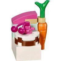LEGO Disney příběhy 41143 Borůvka a její kuchyně 5