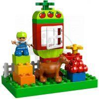 LEGO DUPLO 10517 - Moje první zahrada 2