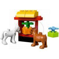 LEGO DUPLO 10517 - Moje první zahrada 3