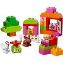 LEGO DUPLO Kostičky 10571 Růžový box plný zábavy 4