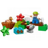 DUPLO LEGO Ville 10581 - Divoké kachny 2