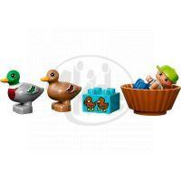 DUPLO LEGO Ville 10581 - Divoké kachny 4