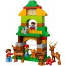 DUPLO LEGO Ville 10584 - Lesopark 4