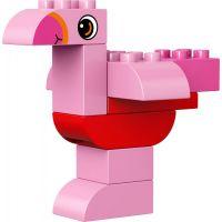LEGO DUPLO 10853 Kreativní box pro stavitele 4