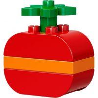 LEGO DUPLO 10853 Kreativní box pro stavitele 6