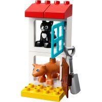 LEGO DUPLO 10870 Zvířátka z farmy 4