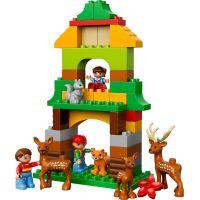 LEGO DUPLO 66538 Výhodné balení DUPLO lesopark 3