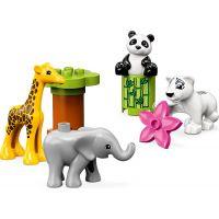 LEGO Duplo Town 10904 Zvířecí mláďátka 4
