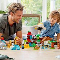 LEGO® DUPLO® Town 10907 Zvieratá sveta 4