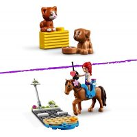 LEGO® Friends 41446 Veterinární klinika v městečku Heartlake 4