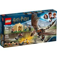 LEGO Harry Potter TM 75946 Maďarský trnoocasý drak: Turnaj tří kouzelníků
