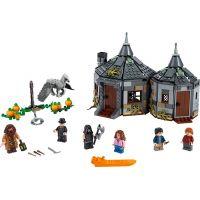 LEGO Harry Potter TM 75947 Hagridova bouda: Záchrana Klofana 2