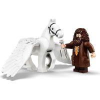 LEGO Harry Potter ™ 75958 Kočár z Krásnohůlek: Příjezd do Bradavic 6