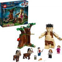 LEGO® Harry Potter™ 75967 Zapovězený les Setkání Drápa a profesorky Umbridgeové