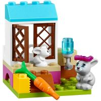 LEGO Juniors 10728 Mia a veterinární klinika 4