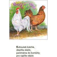 Fragment Lidová říkadla o zvířátkách Jiřina Lockerová 2