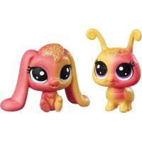 Littlest Pet Shop Duhový set 2 ks zvířátek Apricotta Ambergleam a Sunset Glimmerbug