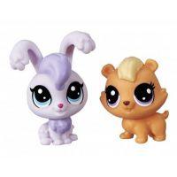 Littlest Pet Shop Dvě zvířátka Lilac Bunnton + Biff Hamsted