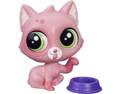 Littlest Pet Shop jednotlivá zvířátka - Cami Kitson