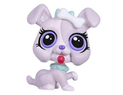 Littlest Pet Shop jednotlivá zvířátka - Tinsley Bulman