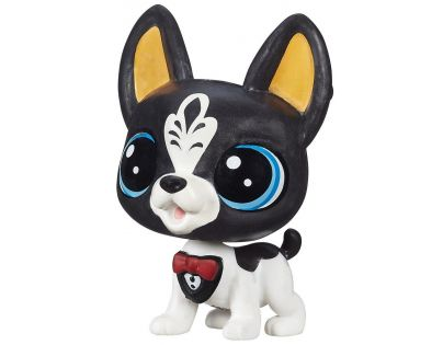 Littlest Pet Shop jednotlivá zvířátka B A8229 - Tux Blackstone