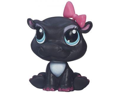 Littlest Pet Shop jednotlivá zvířátka B A8229 - Yolanda Yawnson