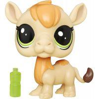 Littlest Pet Shop jednotlivá zvířátka B A8229 Garbanzo Hillville