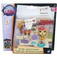 Littlest Pet Shop Tématický hrací set - B4485 2