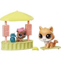 Littlest Pet Shop Tematický set se 2 zvířátky Pool House