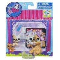 Littlest Pet Shop zvířátka - 3587 Buldog 3588 mládě 3