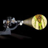 Mac Toys  M8000601 - Kovový mikroskop s lampičkou a projektorem 100x-900x 3