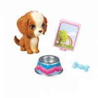 Mattel Barbie mini doplňky Pejsek s doplňky