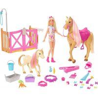 Mattel Barbie Rozkošný koník s doplnkami
