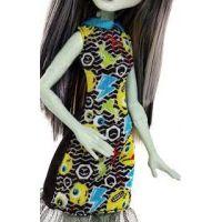 Mattel Monster High příšerka Frankie Stein DVH19 4