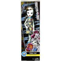 Mattel Monster High příšerka Frankie Stein DVH19 6