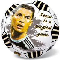 Star Míč celebrity fotbalu 23 cm 6527
