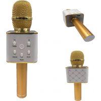 Mikrofon karaoke kov 25 cm nabíjení přes USB zlatý 3