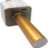 Mikrofon karaoke kov 25 cm nabíjení přes USB zlatý 5
