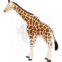 Mojo Animal Planet Samice Žirafy
