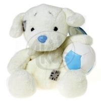 My blue nose friends – Labrador