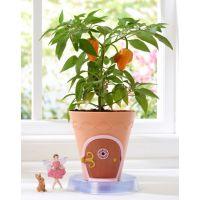 My Fairy Garden Kouzelná zahrádka pohádkový květináč