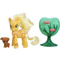 My Little Pony Poník s kamarádem a doplňky - AppleJack